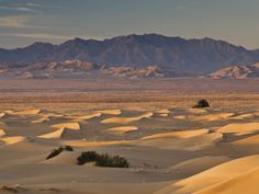 Mojave desert, USA