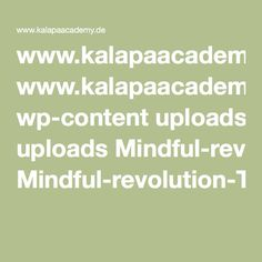 www.kalapaacademy.de wp-content uploads Mindful-revolution-TIME.pdf