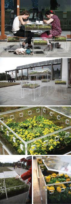 Plexiglass container furniture...