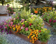 Raised flower beds @ Meadowbrook Farm