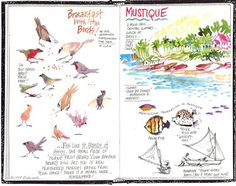 Florida Book News: The Art of Illustrated Travel Journaling with Diana Hollingsworth Gessler