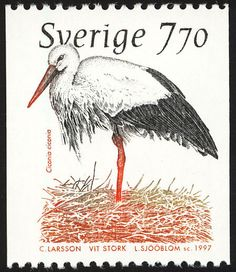 White Stork stamps - mainly images - gallery format