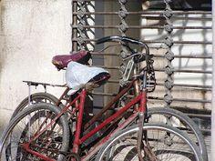 La foto del día: Día Mundial de la bici con amor eterno