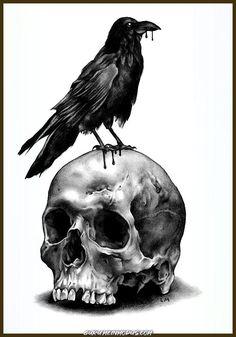 Skull & Raven Art Print Leon Morley drawings skull Skull & Raven Art Print by leonmorley Skull Tattoo Design, Tattoo Design Drawings, Skull Tattoos, Animal Tattoos, Cool Skull Drawings, Raven Tattoo, Dark Tattoo, Tatoo Crane, Tattoo Caveira