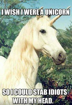 I wish I was a unicorn                                                                                                                                                      More