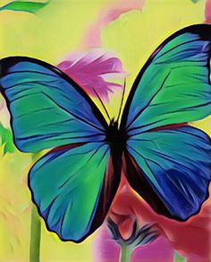 Butterfly art #colors #free #beautiful