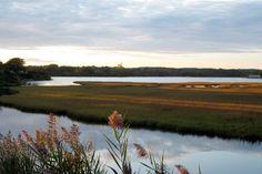 Succotash Marsh – Potter Pond, East Matunuck