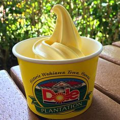 Hawaii Mom Blog: A Fun-Filled Day at Dole Plantation