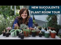 New Succulents + Plant Room Tour! // Garden Answer - YouTube