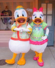 Disney Fan, Disney Love, Disney Parks, Daisy Costume, Disney Characters Costumes, Disney Insider, Donald And Daisy Duck, Park Photos, Mickey And Friends