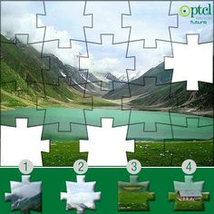 Which missing parts will complete this puzzle ?