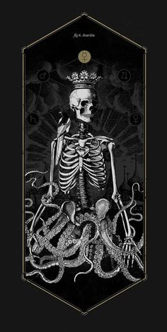 The Anatomy of Sin This collection draws on illustrations in old books on anatomy, botany and zoology in order to make a dissection of the symbols that tradition has associated from time immemorial. Creepy, Art Noir, Arte Obscura, Mystique, Skull And Bones, Skeleton Bones, Kraken, Memento Mori, Cthulhu