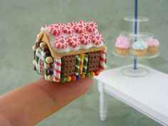 gingerbread house-look how tiny