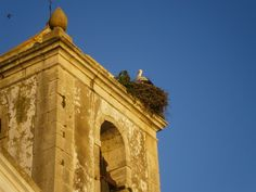 Promenor torre da igreja