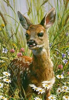 """Hi gals, let's continue with the animal theme and do """"Animal Art"""" for 12-4.  Lots of great pins out there ♥ Carl Brenders artwork"""