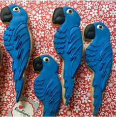 Parrots Cookies