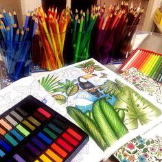 Muitas inspirações!! Use #colorindolivrostop _ @Regrann from @sheylabrazs -  A vida precisam de mais amor e lápis de cor...❤️ #Boanoite #Regrann