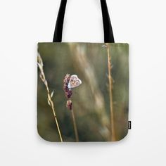 Brown Argus butterfly Tote Bag