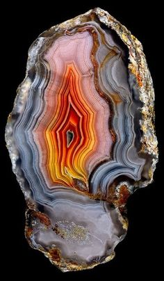 beautiful-minerals: Agate - A love for minerals Minerals And Gemstones, Rocks And Minerals, Beautiful Rocks, Simply Beautiful, Animals Beautiful, Rock Collection, Mineral Stone, Rocks And Gems, Stones And Crystals
