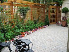 GARDEN TRELLIS DESIGNS- ideas for my no grass backyard.