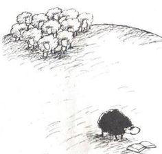Ens agraden les ovelles negres!