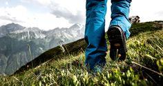 Hiking, Mountains, Travel, Marketing, Nordic Walking, Reyes, Mexico, Backpacks, Health