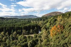 Black Rock Gorge, Ross and Cromarty