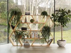 You've Never Seen Bookcases Quite Like These Before