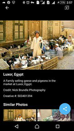 Life In Egypt, Street Vendor, Cairo Egypt, Luxor, Photography, Fotografie, Photograph, Photo Shoot, Fotografia