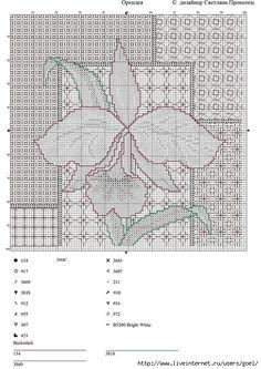 Orchid chart 189 (495x700, 312KB)