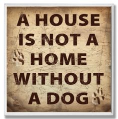 A House is Not a Home Pet Wall Art Plaque