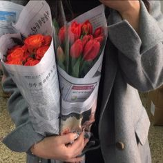 flowers, red, and rose image Flower Aesthetic, Red Aesthetic, Aesthetic Pictures, Spring Aesthetic, Nature Aesthetic, Aesthetic Beauty, Flower Yellow, My Flower, Red Flowers