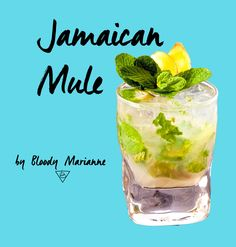 Jamaican Mule by Bloody Marianne #cocktail #mixology