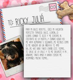 Valentine's Day Note for Ricky Juliá from Lilian de Juliá on 3MillionDogs.com