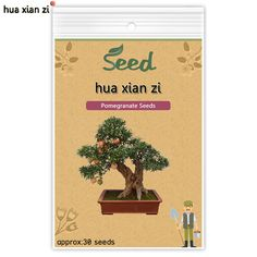 HUA XIAN ZI Pomegranate Seeds Delicious Sweet Fruit Plants Seed Home Garden Succulents Tree Bonsai 30 seeds/bag
