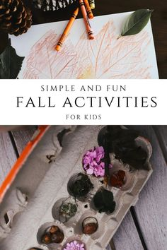 Autumn Activities For Kids, Activities To Do, Pine Cone Bird Feeder, Cardboard Cartons, Kitchen Twine, Lacing Cards, Fall Garland, Paper Tree, Leaf Coloring