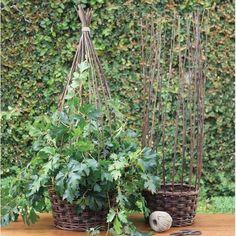 HomArt Willow Gathered Baskets – Modish Store.