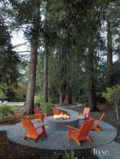 Luxe Interiors + Design A camp-like setting featuring a circular patio in the woods, most likely in New England, complete with fire pit and red Adirondack chairs.