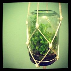 Terrarium is a great solution for small spaces where you don't have enough place for flowers in a pot. It can make a nice looking decoration that will bring a small piece of nature into your home. I found this great project for hanging terrarium made in baby food jar. Fern from Lifeonthebalcony.com has …