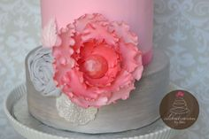 Pink and Grey Vintage — Birthday Cake Photos