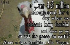 Change this year to a Happy Thanksliving, give Compassion. Go Vegan!~