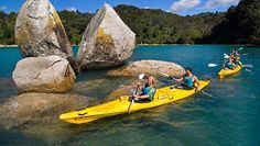 Discover the top of the South Island, known for its warm mild weather, stunning Abel Tasman National Park, and friendly locals. Living In New Zealand, Visit New Zealand, Abel Tasman National Park, New Zealand South Island, New Forest, South Pacific, Sport, Australia Travel, Oh The Places You'll Go