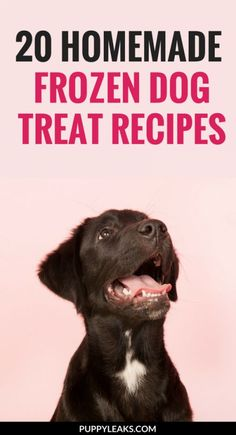 Not sure how to make frozen treats for your dog?I've put together a list of my favorite frozen dog treat recipes. From doggie ice pops to frozen pumpkin treats, there's a Dog Biscuit Recipes, Dog Treat Recipes, Dog Food Recipes, Food Tips, Homemade Dog Treats, Healthy Dog Treats, Pet Treats, Chihuahua, Frozen Dog Treats