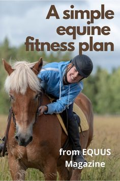 Training Schedule, Workout Schedule, Training Tips, Horse Exercises, Veterinary Services, Out Of Shape, Do Exercise, Horse Training, Horse Care