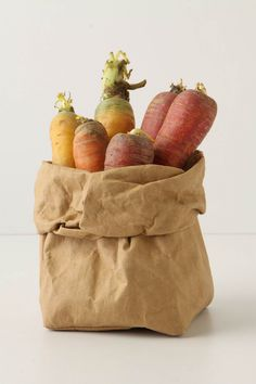 washable paper bag from anthropologie Bread Storage, Storage Baskets, Kraft Bag, Gadgets, Brown Bags, Brown Paper, Kraft Paper, Simple Pleasures, Food Gifts
