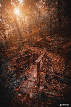 Bridge to Dreamland - ) Fall Pictures, Nature Pictures, Pretty Pictures, Nature Images, Autumn Scenes, Autumn Aesthetic, Autumn Cozy, Fall Wallpaper, Autumn Photography