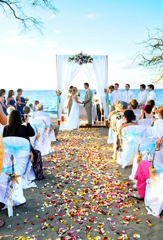 Costa Rica - Wedding by RIU - Guanacaste - Destination Wedding Beach Wedding Photos, Beach Wedding Photography, Wedding Photography Inspiration, Wedding Inspiration, Wedding Ideas, Wedding Destinations, Destination Weddings, Wedding Story, Dream Wedding