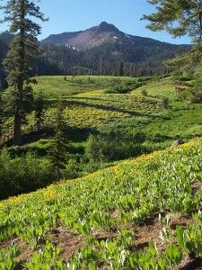 Top 10 Northern California Hikes (pictured: Mt Lassen National Park near Redding) Hiking Places, Places To Travel, Places To See, Hiking Trails, Hiking Spots, Travel Maps, Usa Travel, California Travel, Northern California