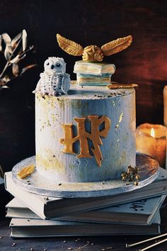 If you or your little one is Harry Potter-obsessed, the best way to celebrate their next birthday is with a magical Hogwarts party in honor of the budding Harry Potter Desserts, Bolo Harry Potter, Gateau Harry Potter, Harry Potter Birthday Cake, Harry Potter Food, Harry Potter Wedding, Harry Potter Theme Cake, Pretty Birthday Cakes, Card Birthday