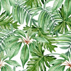 Tropical Leaves - Modern Design - Adhesive Wallpaper - Removable Wallpaper - Wall Sticker - Wall Mural - Customizable Wallpaper